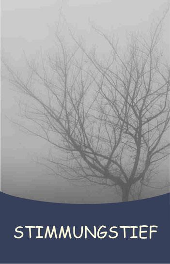 Stimmungstief - Depression - Trauer - Trennung - Psychosomatische Energetik - PSE - Bärbel Bröskamp - Heilpraktikerin