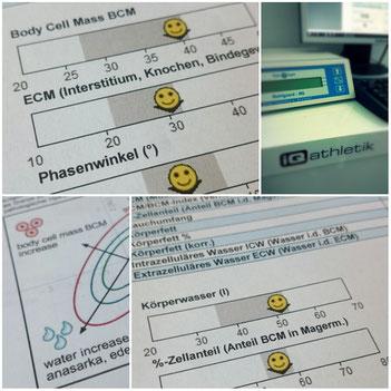 Ergebnisse der Bioelektrischen Impedanz Analyse (BIA)