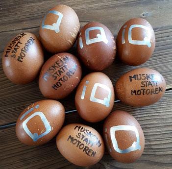 Eier und Eiweiß in der Ernährung für Sportler