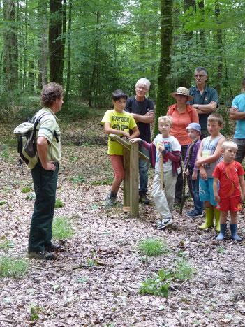 Balade en forêt avec l'ONF