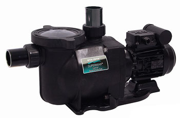 Sta-Rite SuperMax S5P1R von Pentair Filterpumpe Filteranlage Poolpumpe