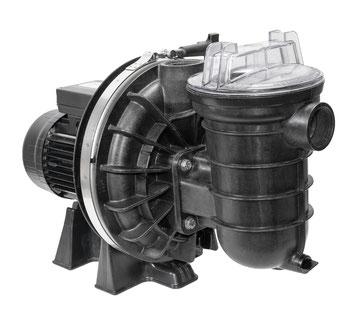 La Sta-Rite 5P2R P-STR von Pentair Filterpumpe Filteranlage Poolpumpe