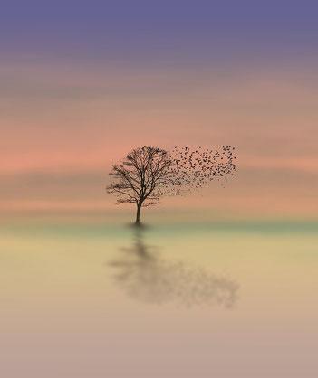 Baum mit Vogelschwarm - Stressbewältigung für Jugendliche