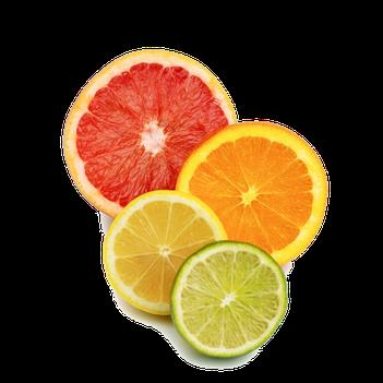 DM4U-D&M-Natuurlijke-dierverzorging-honden-hond-puppy-pup-shampoo-conditioner-parfum-hondenshampoo-parabeen-vrij-PH-neutraal-vacht-huid-agrum-agrume-citrus-vruchten-korte-vacht-halflange-half-lange-ontwarrend-volume-glans-vitamine-C-B-E-foliumzuur