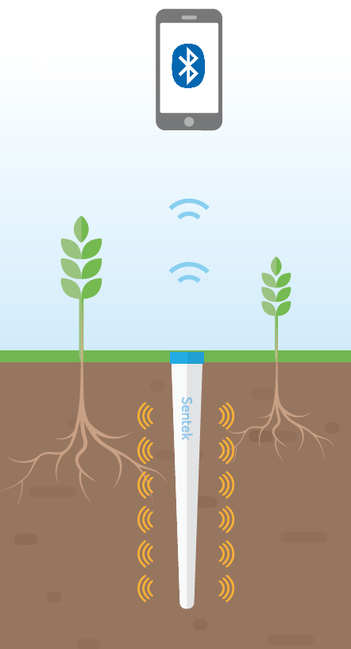 irrigation, sonde capacitive, arrosage, eau, agralis