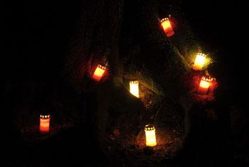 Lichtergang, Foto: Richarda Buchholz