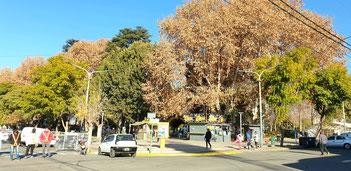 Plaza Principal von Chilecito