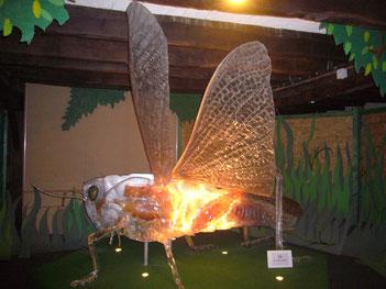 Cité des insectes Nedde atelier scolaire animation nature patrimoine visite guidée jeune public pédagogique Pays Monts et Barrages