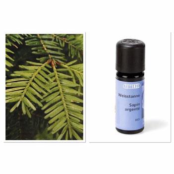 DIY Rezepte Aromatherapie ätherische Öle Weisstanne