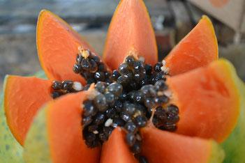 Papaya Superfrucht gesund Health Healthlove Blog Blogger Gesundheit Kerne Vitamin C