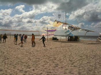 Sommerfreuden, Licht und Luft
