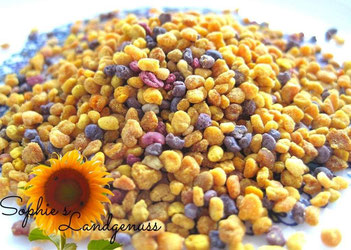Blütenpollen, Pollen, Bienen, Imker, Honig, Propolis, Eiweiß, Naturprodukt, Naturheilkunde