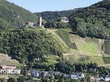 Die teuerste Weinlage Deutschlands: Bernkastel Doctor
