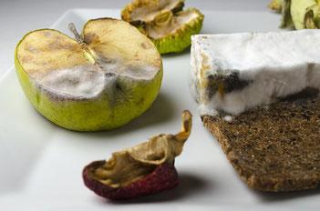 Schimmlige Lebensmittel: Äpfel, Brot