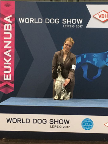 """Jolanthe vom Belauer See"" and Svenja Arendt at the World Dog Show 2017, Photo: Svenja Arendt"