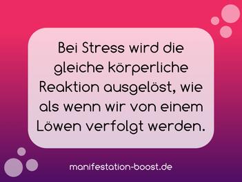 Bei Stress wird die gleiche körperliche Reaktion ausgelöst, wie als wenn wir von einem Löwen verfolgt werden.