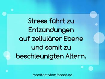 Stress führt zu Entzündungen auf zellulärer Ebene und somit zu beschleunigten Altern.