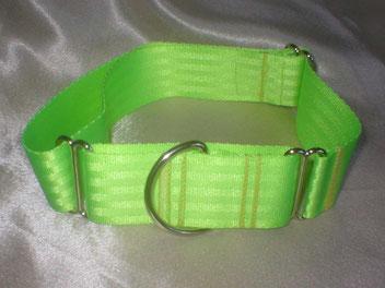 Martingale, Halsband, 4cm, Gurtband neongrün