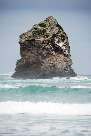 Gull Rock, Sand Fly Bay, Otago Peninsula