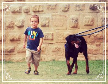 relation chien enfant atelier aude