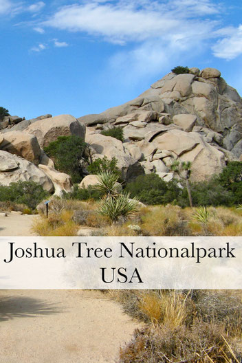 USA Rundreise: Roadtrip zum Joshua Tree Nationalpark und Lake Havasu City. #usareise #usaroadtrip