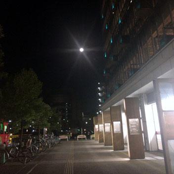 月の撮影って難しいですね・・・
