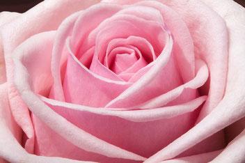 愛と美の女神アフロディーテ カルアミーヤのブログ アジュールプラス スピリチュアル 天界天界