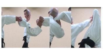 画像⑦片手取り外巡り肘を落として降氣の形で手首を包んで側頸へ結び、回外して母指球を突き出す。