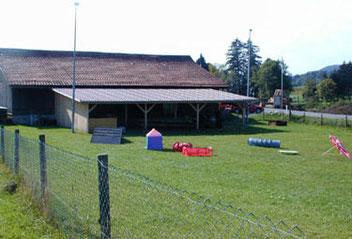 Hütte Gruppe Wald