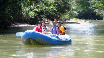 Nature Tour Combo: Arenal Hanging Bridges Hike and Peñas Blancas River Safari