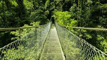 Arenal Combinado: Puentes Colgantes & Volcán Arenal