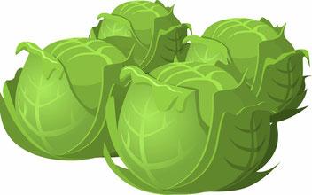 nachhaltiges Gemüse