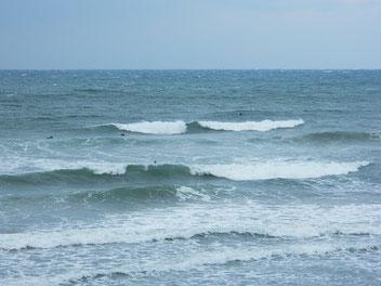 朝から風が強めに吹いたり止んだりで、波も風で抑えられた感じです。