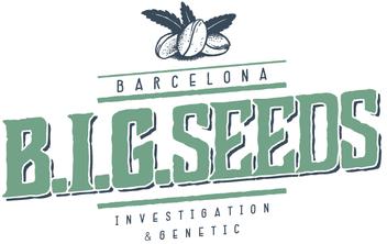semillas marihuana feminizadas big seeds barcelona, big seeds barcelona, punto de venta oficial semillas marihuana