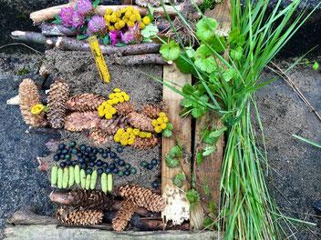 Landart Andy Goldsworthy  Natur Blumen Kunst Sprachlernklasse