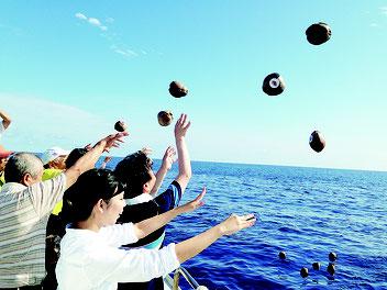 恋路ヶ浜に無事に届くことを願い、一斉にやしの実を投げ入れる参加者たち=8日午前、石垣島沖(提供写真)