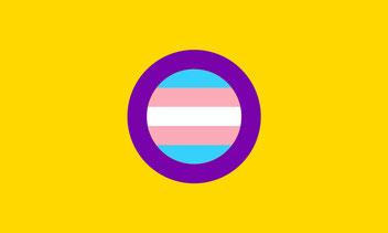 trans-intersex-flag