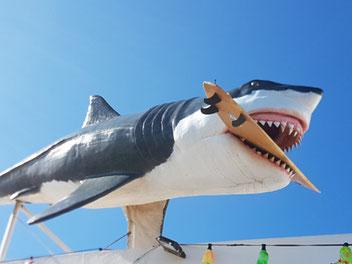 Wlodarek - Haifisch-Figur mit Surfbrett