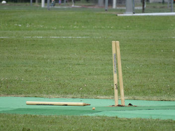 Wicket down at the Euro T20 championship in Warsaw, Poland (11-14.8.2016)