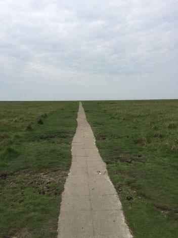 Hinter dem Horizont geht's weiter...... (Udo Lindenberg)