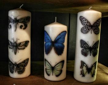 Bougies papillons