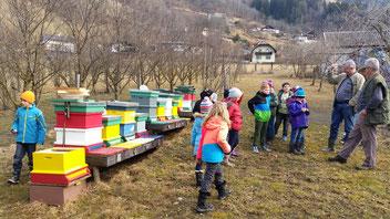 Eine Schulklasse am Bienenstand: Ablauf eines Bienenjahres