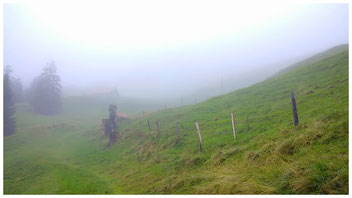 der Weg zu den Mythen ist steil, beschwerlich und wegen des Nebels auch mystisch