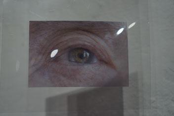 portraitierte Augenblicke, 2018,  digitale Fotografien auf Folie.