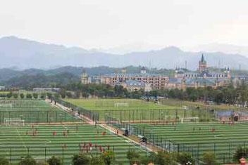 Una foto di parte dei 50 campi, metà in erba perfetta e gli altri in sintetico all interno dell'Evergrande Football School