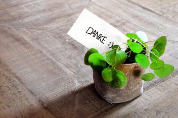 Gastgeschenke in Form von Pflanzen
