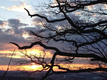 Ergänzende Krebstherapie in Naturpraxis Dr Wirz in Heilbronn, Abendsonne über Heilbronn