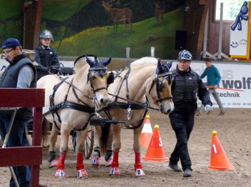Audrey Bannert vom Verein Pferdefreunde Bad Orb wurde Zweite im Hindernis-Fahrwettbewerb der Zweispänner-U16.