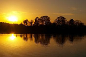 Sonnenuntergang über der Auenlandschaft Hohenrode. - Foto: Kathy Büscher