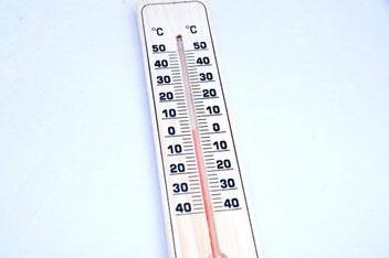 褐色脂肪細胞に温度でアプローチ